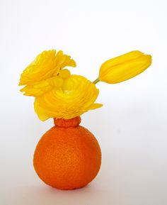 ikebana ikebanagii Ryuichi Nagira 2016/04/02 花金鳳花(ハナキンポウゲ・ラナンキュラス)+ 鬱金香(うこんこう・チューリップ) +不知火(シラヌヒ・デコポン):Ranunculus asiatics+ tulipa+Shiranui(Citrus unshiu × C. sinensis)