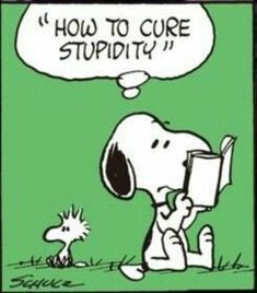 Cure stupidity: for some is Incurable. Charlie Brown Christmas, Charlie Brown And Snoopy, Snoopy Pictures, Cute Pictures, Snoopy Comics, Foto Poster, Snoopy Quotes, Snoopy And Woodstock, Peanuts Snoopy
