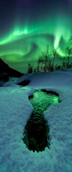 Aurora Borealis, Evenes, Norway                                                                                                                                                      More