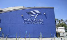Aquarium of the Pacific Long Beach. A funday trip from anywhere in the Los Angeles area. Click image for ticket deals.
