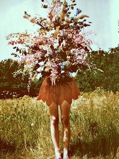 I <3 wild flowers