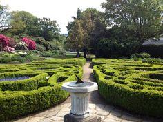 Botanic Gardens Dunedin New Zealand   16-Day Australia And New Zealand Odyssey I   #NZ #Travel #Cruises