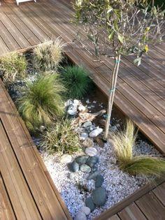 parterre de graminés pour une terrasse