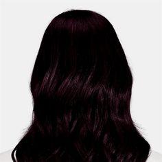 Violet Black Hair Color, Aubergine Hair Color, Eggplant Colored Hair, Eggplant Hair, Black Brown Hair, Hair Color For Black Hair, Dark Hair, Dark Brown, Dark Cherry Hair
