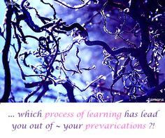 ... which #process_of_learning has lead you out of ~ your #prevarications ?! ( #Samara )
