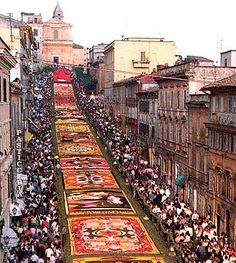 Infiorata di Genzano. Italy. Incredible Intricate flower carpets. Flower festival that can be raced back from 1778. Every Year in the second week of June