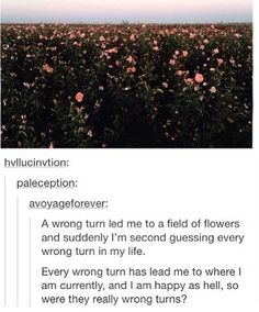 Plot twist it is the field of poppies from wizard of Oz<<<BIGGER plot twist - It's Opium from The House of the Scorpion Tumblr Stuff, Tumblr Posts, Pray For Venezuela, Faith In Humanity, Tumblr Funny, Deep Thoughts, Writing Prompts, Mind Blown, Beautiful Words