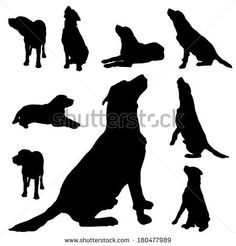 Vector silhouette of a dog on white background. by majivecka, via Shutterstock