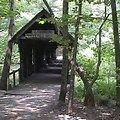 Covered Bridge Trail Alabama