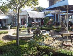 High Tea in Wynberg_a beautiful tea spot. Provinces Of South Africa, African Love, Cape Town South Africa, South African Recipes, Lush Garden, Places Of Interest, Beautiful Places To Visit, Wine Country, West Coast