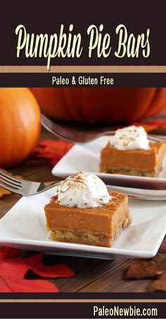Creamy and rich pumpkin flavor with a nutty crust. An easy to make classic fall dessert! #paleo #glutenfree #pumpkin