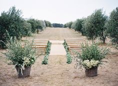 Photography: Jose Villa Photography - josevillaphoto.com Floral Design: Natural Art Flowers By Rebecca Grace - www.naturalartflowers.com.au Ceremony Venue: Private Olive Grove - n/a   Read More on SMP: http://stylemepretty.com/vault/gallery/37806