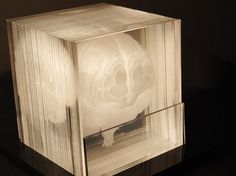 laser-etched acrylic slides create a whole brain. this is so awesome - make me one please!
