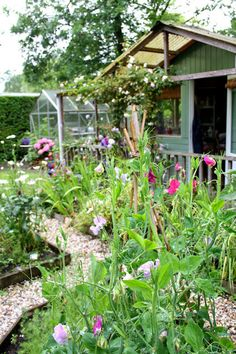 Madelief: My garden (a blog i want to look through.)