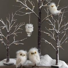 Lighted trees with owls