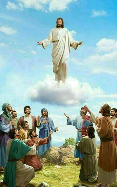 I really want to Thank you, Dear Lord Jesus Christ, Amen!  † ❤