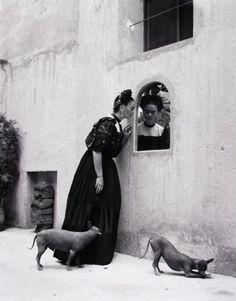 Lola Álvarez Bravo creó la Galería de Arte Contemporáneo. En ese espacio Frida Khalo, su amiga, realizó la primera exposición individual de su obra pictórica, en 1953.