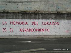 LA MEMORIA DEL CORAZÓN ES EL AGRADECIMIENTO  ACCIÓN POÉTICA      AV. VILLAGRAN, MTY. N.L.  #muros #paredes