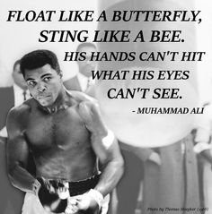 Mma Quotes Extraordinary The 15 Best Mike Tyson Quotes Mma Gear Hub  Misc Pinterest . 2017