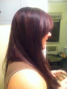 Plum highlights on medium brown hair hair art by elizabeth plum highlights on medium brown hair pmusecretfo Choice Image