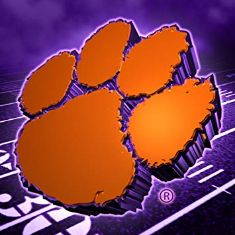 Go Clemson Tigers ! Clemson Logo, Clemson Tiger Paw, Clemson Football, College Football, Football Pics, Clemson Wallpaper, Football Wallpaper, Tiger Images