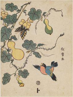 Bird, Gourd Vine, and Butterfly  Japanese Edo period Artist Kitagawa Utamaro II