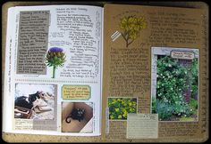other journal pages | Flickr - Photo Sharing!