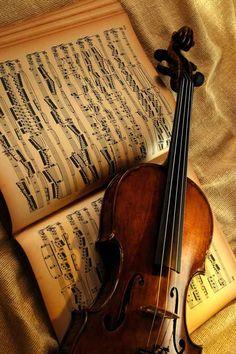 ♫♪ MUSIC ♪♫ Violin brown