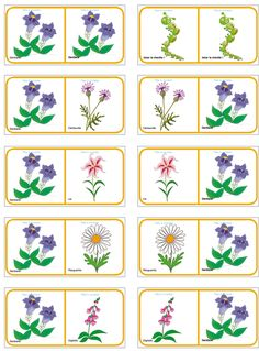 Dominos FLEURS  planche 3 Infant Activities, Baby Activites, Spring Theme, Plantation, Flower Crafts, Kids And Parenting, Dominos, Free Printables, Crafts For Kids