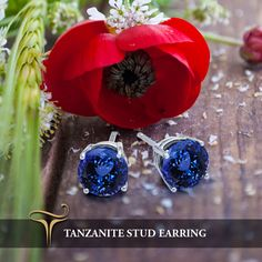 Our Amazing World Map #StudsEarrings from our #Tanzanite Collection! Our most popular collection inspired by the love of celebs and Exploring the world!