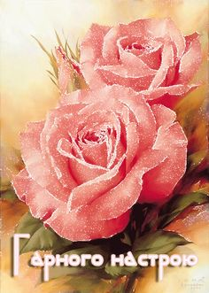 Concept, Rose, Flowers, Plants, Pink, Plant, Roses, Royal Icing Flowers, Flower