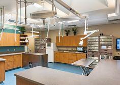 Alternate view of treatment | Hospital Design