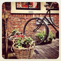 I Am sterdam ❤ #dutch #jj #jj_forum #ebstyles_gf #earlybirdlove #amsterdam #bikesinthecity #bikesaroundtheworld - @alanisko- #webstagram