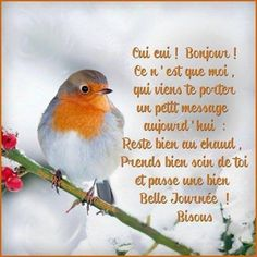 Cool avec eux en hiver svp French Quotes, Spanish Quotes, Love Phrases, Dear God, Gods Love, Cool Words, Good Morning, Bible Verses, Scriptures