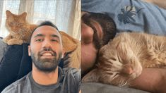 Man Proves How Adopting a Cat Is Therapeutic | Power of Positivity