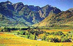 Paarl South Africa. Wine Country!