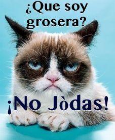 "Grumpy cat meme I did in Spanish. Translation: ""Me? Crude? #### off!!"" #cats, #gatos, #animals"