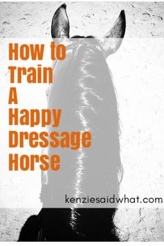 How to train a happy Dressage horse, a weekly riding schedule!