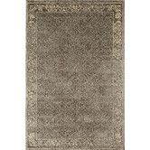 Found it at Wayfair - Choko  Gray Area Rug