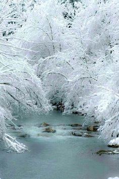 Winter and ice