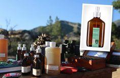 Juniper Ridge's wilderness-inspired fragrances.