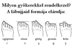 "A study claims you can tell your heritage from the shape of your feet, so take a look and discover where your ancestors originally came from. My moms feet are ""egyptian"" and mine are ""greek"" Weird Facts, Fun Facts, Bizarre Facts, Random Facts, Random Stuff, Human Genome, Shape Of You, Discover Yourself, Ancestry"