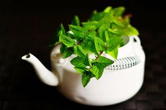 Peppermint Tea - Pick out peppermint tea and say bye to all sleepless nights especially due to nasal congestions. One cup of peppermint tea can work wonders and serves as the best decongestant. Weight Loss Tea, Best Weight Loss, Household Cleaning Tips, Cleaning Recipes, Cleaning Hacks, Deep Cleaning, Cleaning With Peroxide, Hydrogen Peroxide Uses, Kefir