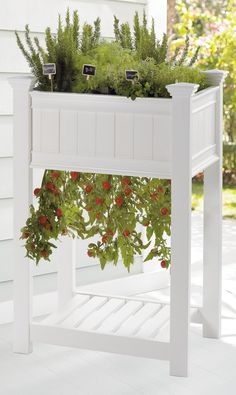 Our Raised Tomato Planter is accessible, requires no bending or kneeling, with less weeding, less pests, and no soil compaction. Hanging plants get great air circulation, watering is easier to control, and fertilizer never touches the plants or fruit. It's perfect for use in small spaces, with a smart design that allows vegetables to grow through the bottom, while the full planter above provides room for growing flowers or herbs. Diy Herb Garden, Garden Oasis, Lawn And Garden, Tall Planters, Garden Planters, Balcony Gardening, Small Space Gardening, Urban Gardening, Garden Renovation Ideas