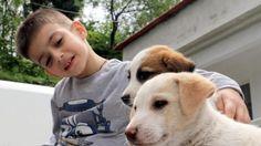 Evcil hayvan beslemek çocuk gelişimine olumlu katkı sağlıyor