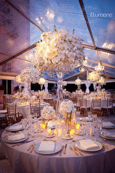Vizcaya wedding lighting | Miami and South Florida