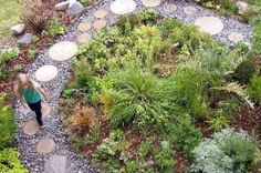 50 Ways to Save Water in Your Yard: Go Native Ways To Save Water, Water Wise, Water Conservation, Throughout The World, Drought Tolerant, Stepping Stones, Grass, Yard, Landscape