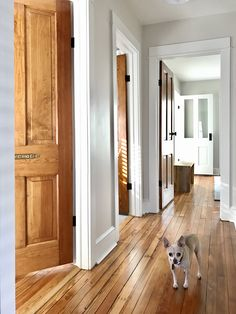 Stained wood doors with white trim. Paneled doors are similar look to main level doors. Beach House Tour, Beach House Decor, Oak Wood Trim, Wood Stain, White Baseboards, Stained Trim, Young House Love, Ideas Hogar, Pine Floors
