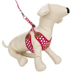 CueCue Pet Choke Free Harness with Leash Red Polka Dot Medium *** Learn more by visiting the image link. (This is an affiliate link) Best Cat Harness, Dog Harness, Collar And Leash, Cat Collars, Pet Shop, Small Dog Clothes, Cat Training Pads, Girl And Dog, Pet Tags