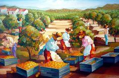 Colheita de laranjas (100 x 130)
